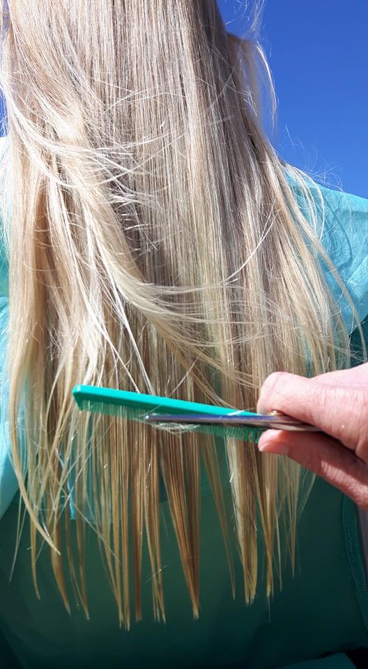 Strandkapper - Eva haar in de wind